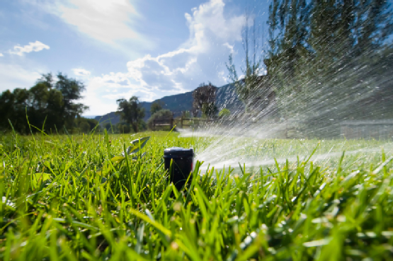 Lawn sprinklers keeping Perth's verdant green municipal carpet healthy all year round - really the best use of our limited resources?